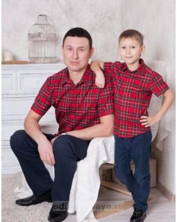 Комплект рубашек для папы и сына Шотландка М-250