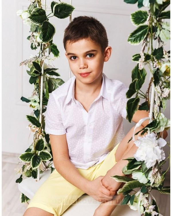 Шорты для мальчика Тропикана М-2015 цвет желтый